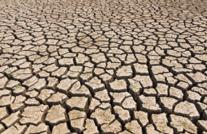 پاورپوینت درس دوم انسان و محیط زیست یازدهم(خاک,بسترزندگی)