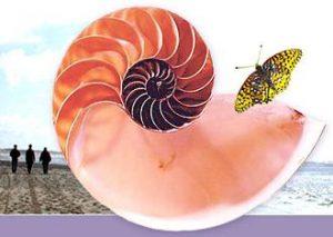 دانلود پاورپوینت فصل چهارم گفتار سوم زیست شناسی دوازدهم تغییر در گونهها